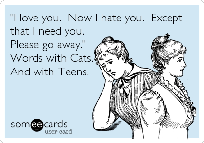"""""""I love you.  Now I hate you.  Except that I need you.  Please go away.""""   Words with Cats. And with Teens."""