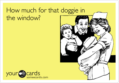 How much for that doggie in