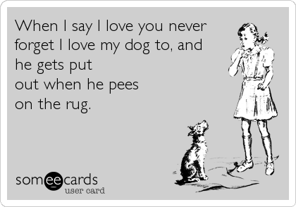 When I say I love you neverforget I love my dog to, andhe gets putout when he peeson the rug.