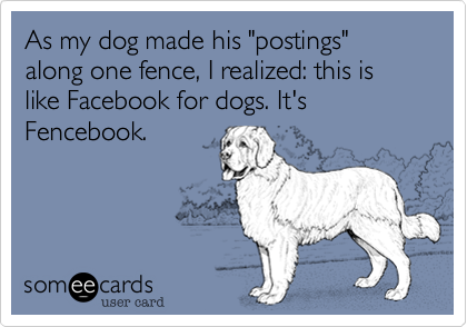 "As my dog made his ""postings"" along one fence%2C I realized%3A this is like Facebook for dogs. It's Fencebook."