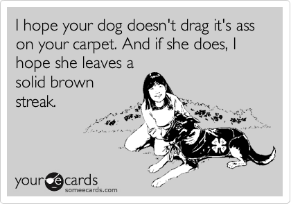 I hope your dog doesn't drag it's ass on your carpet. And if she does, I hope she leaves a