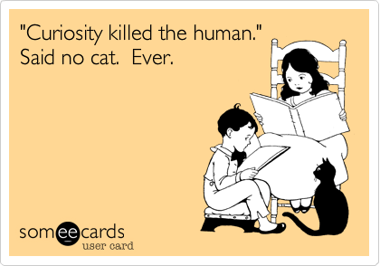 """Curiosity killed the human.""