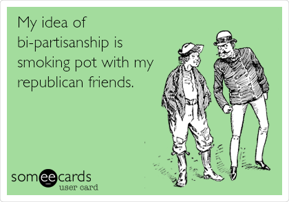 My idea of bi-partisanship is smoking pot with my republican friends.