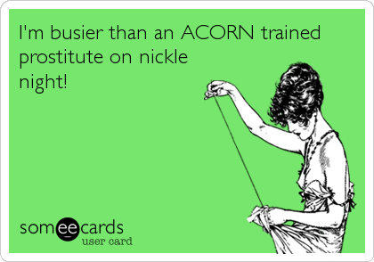 I'm busier than an ACORN trained prostitute on nickle night!