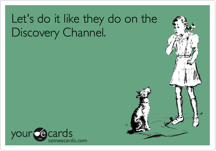Let's do it like they do on the Discovery Channel.