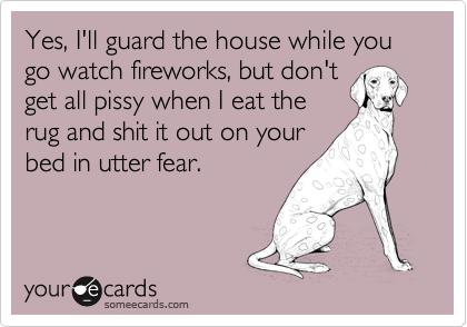 Yes, I'll guard the house while you go watch fireworks, but don't 
