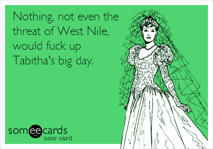 Nothing, not even the threat of West Nile, would fuck up Tabitha's big day.