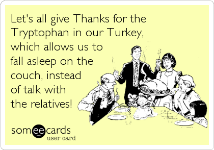Let's all give Thanks for the Tryptophan in our Turkey,which allows us tofall asleep on thecouch, insteadof talk withthe relatives!