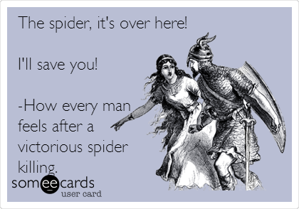 The spider, it's over here!  I'll save you!  -How every man feels after a victorious spider killing.
