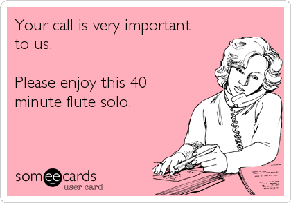 Your call is very important  to us.   Please enjoy this 40 minute flute solo.