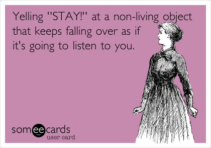 Yelling ''STAY!'' at a non-living object that keeps falling over as if it's going to listen to you.