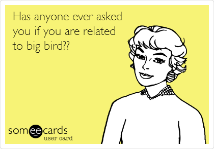 Has anyone ever asked you if you are related to big bird??