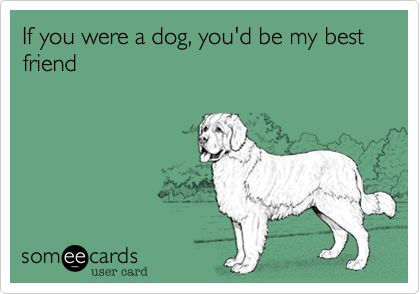 If you were my dog, would you be my best friend