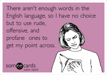 There aren't enough words in the English language, so I have no choice but to use rude,  offensive, and profane  ones to get my point across.
