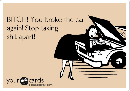 BITCH! You broke the car