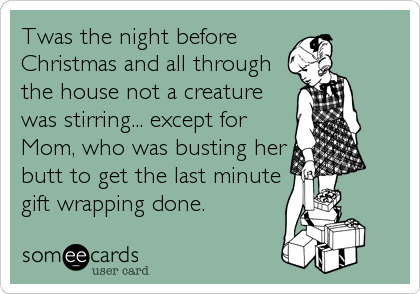 twas the night before christmas and all through the house not a creature was stirring - Funny Twas The Night Before Christmas