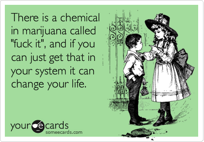 "There is a chemical in marijuana called ""fuck it"", and if you  can jus get that in  your system it can change your life."