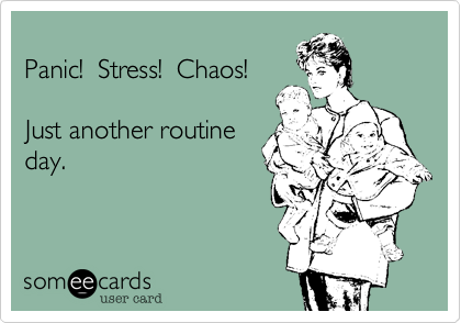 Panic!  Stress!  Chaos!  Just another routine day.