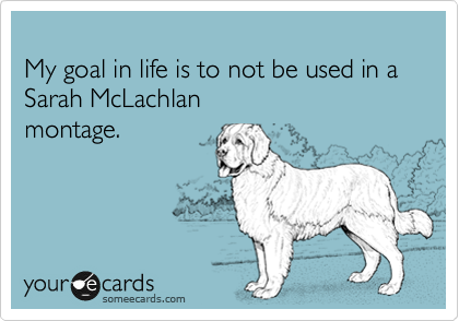 My goal in life is to not be used in a Sarah McLachlan montage.