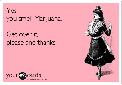 Yes, you smell Marijuana.  Get over it, please and thanks.