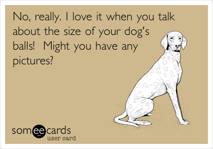No, really. I love it when you talk about the size of your dog's balls!  Might you have any pictures?