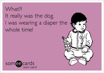 What?!  It really was the dog. I was wearing a diaper the whole time!