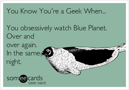 You Know You're a Geek When...  You obsessively watch Blue Planet.  Over and over again. In the same night.