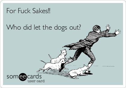For Fuck Sakes!!   Who did let the dogs out?