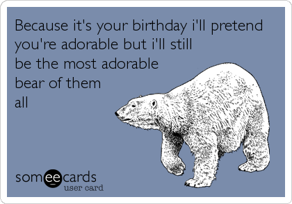 Because it's your birthday i'll pretend you're adorable but i'll still be the most adorable bear of them all