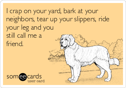 I crap on your yard, bark at your neighbors, tear up your slippers, ride your leg and you still call me a friend.
