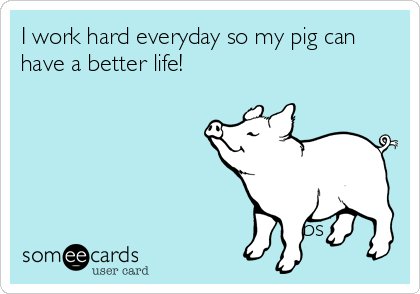 I Work Hard Everyday So My Pig Can Have A Better Life Bs Thinking