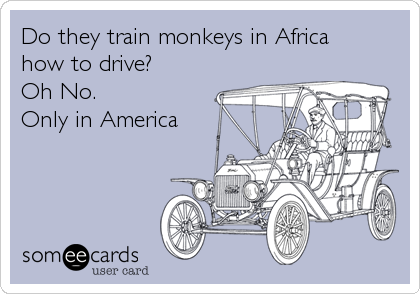 Do they train monkeys in Africa how to drive?  Oh No.  Only in America