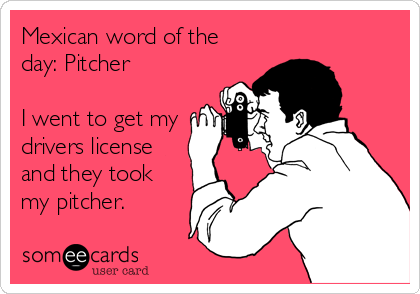 Mexican word of the day: Pitcher  I went to get my drivers license and they took my pitcher.