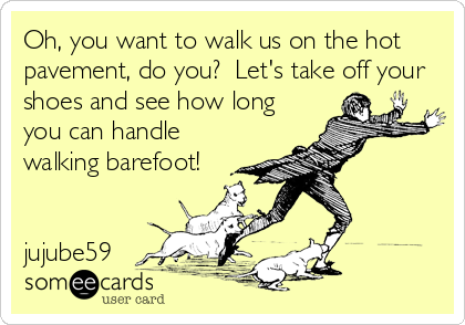 Oh, you want to walk us on the hot pavement, do you?  Let's take off your shoes and see how long you can handle walking barefoot!   jujube59