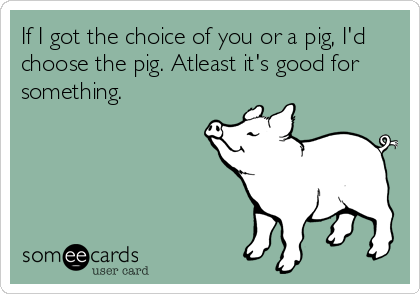 If I got the choice of you or a pig, I'd choose the pig. Atleast it's good for something.