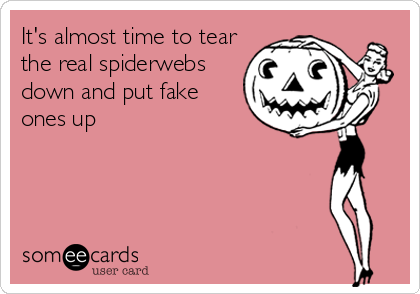 It's almost time to tear the real spiderwebs down and put fake ones up