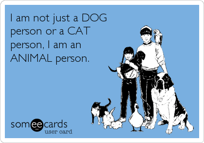I am not just a DOG person or a CAT person, I am an ANIMAL person.