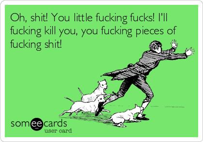 Oh, shit! You little fucking fucks! I'll fucking kill you, you fucking pieces of fucking shit!
