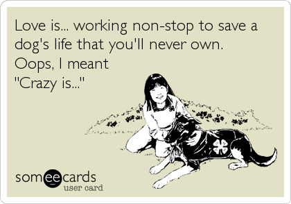 "Love is... working non-stop to save a dog's life that you'll never own. Oops, I meant ""Crazy is..."""