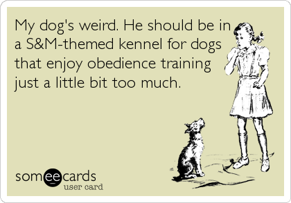 My dog's weird. He should be in a S&M-themed kennel for dogs that enjoy obedience training just a little bit too much.
