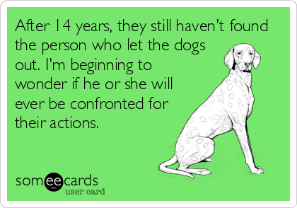 After 14 years, they still haven't found the person who let the dogs out. I'm beginning to wonder if he or she will ever be confronted for their actions.