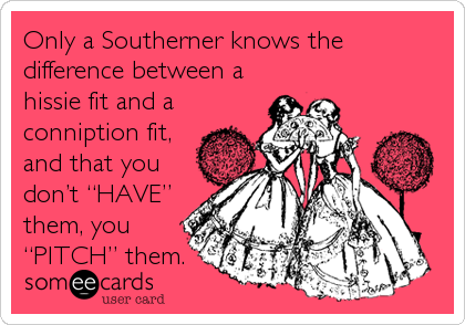 """Only a Southerner knows the difference between a hissie fit and a conniption fit, and that you don't """"HAVE"""" them, you<b"""