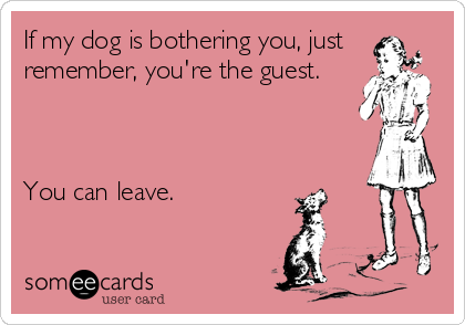 If my dog is bothering you, just remember, you're the guest.    You can leave.