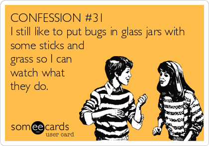 CONFESSION #31 I still like to put bugs in glass jars with some sticks and grass so I can watch what they do.