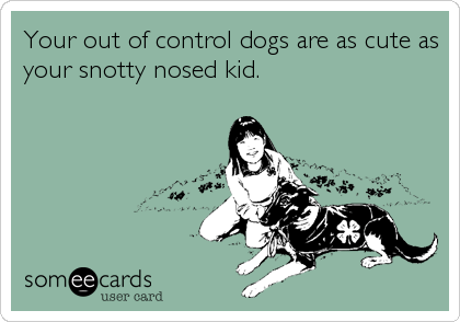 Your out of control dogs are as cute as your snotty nosed kid.