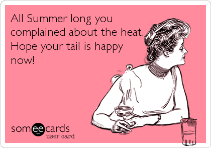 All Summer long you complained about the heat. Hope your tail is happy now!