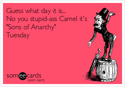 "Guess what day it is... No you stupid-ass Camel it's ""Sons of Anarchy"" Tuesday"