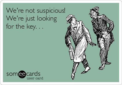 We're not suspicious! We're just looking for the key. . .