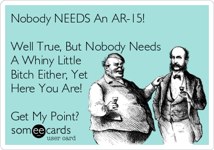 Nobody NEEDS An AR-15!  Well True, But Nobody Needs A Whiny Little Bitch Either, Yet Here You Are!   Get My Point?