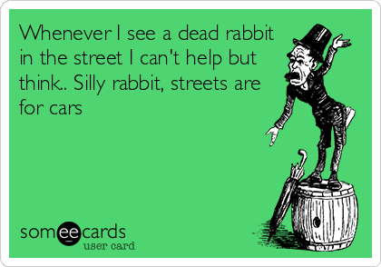 Whenever I see a dead rabbit in the street I can't help but think.. Silly rabbit, streets are for cars